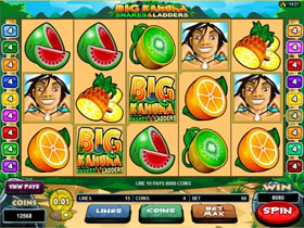 Big Kahuna Snakes and Ladders Slot Main Screen
