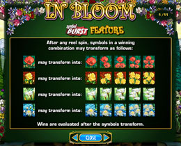 In Bloom Slot Symbol Burst Screen