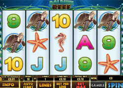 Screenshot of Dolphin Reef Slot