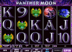 Screenshot of Panther Moon Slot