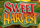 Read Our New Review of Sweet Harvest Slot